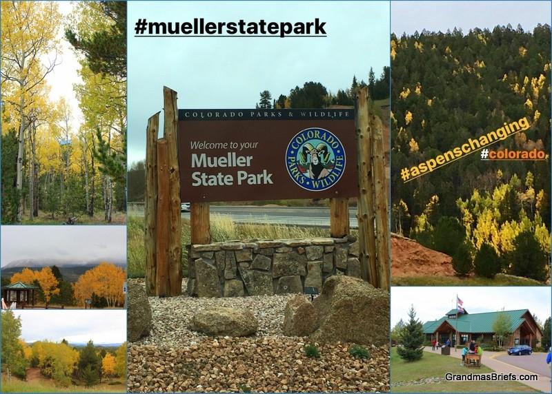 mueller state park.jpg
