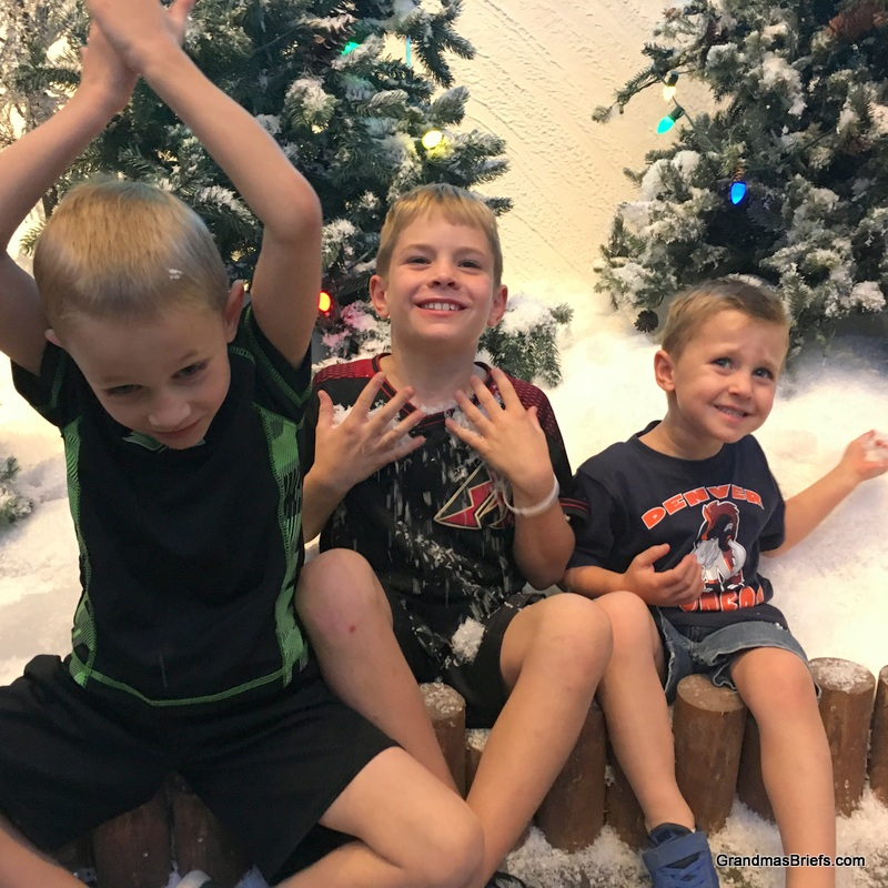 Camden, Brayden, and Declan celebrating (fake) snow!