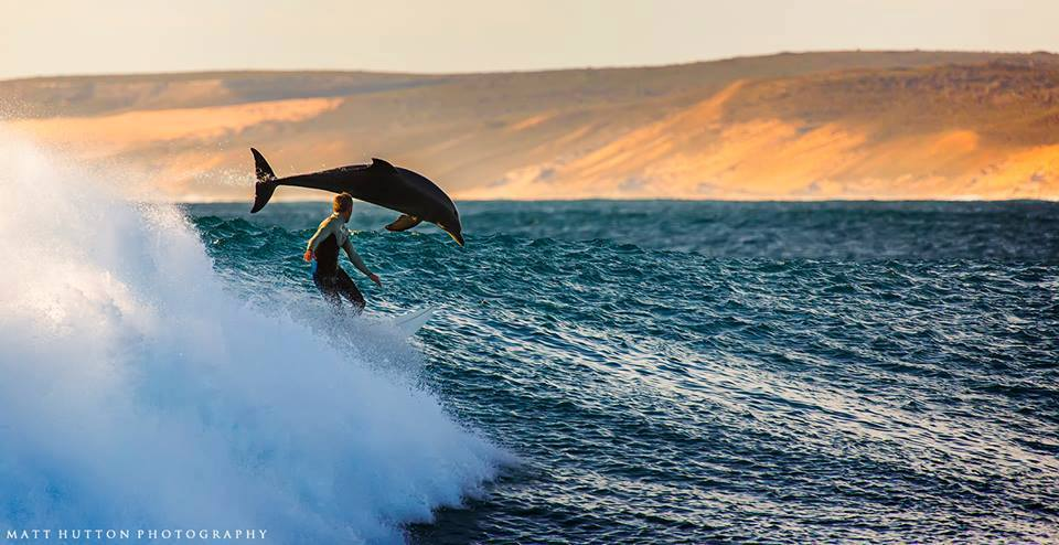 Photo by Matt Hutton