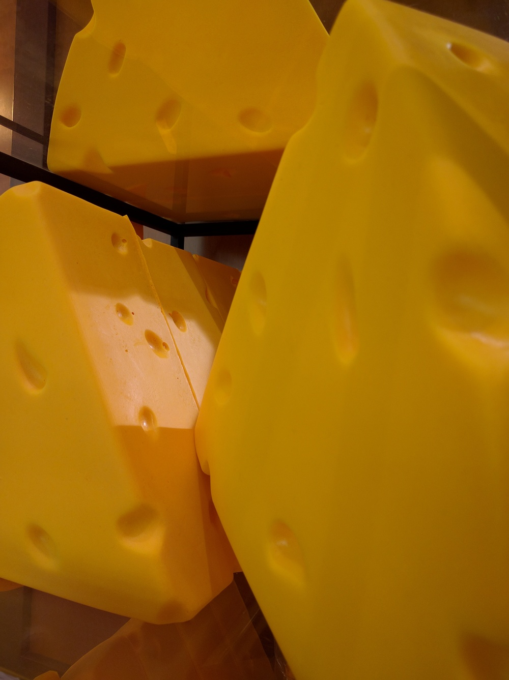 Cheese head (photo: ©Rob Schertzer 2015)