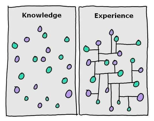 gapingvoid knowledge experience.jpg