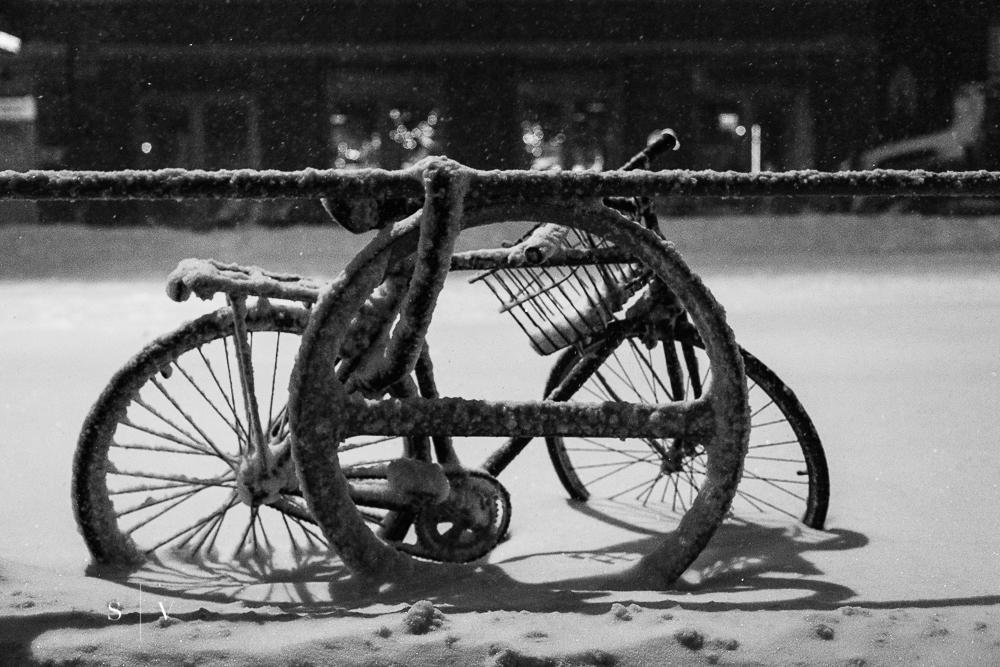 blizzard015.jpg