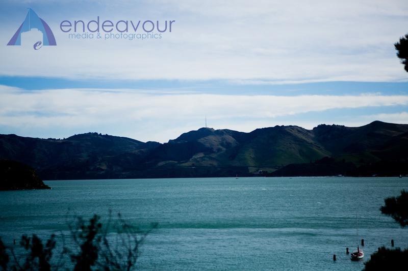 D Harbour 03.jpg