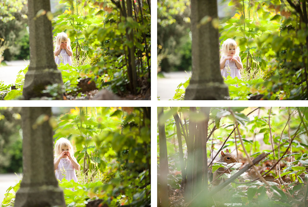 four-year-old-girl-playing-in-park-squirrel.jpg