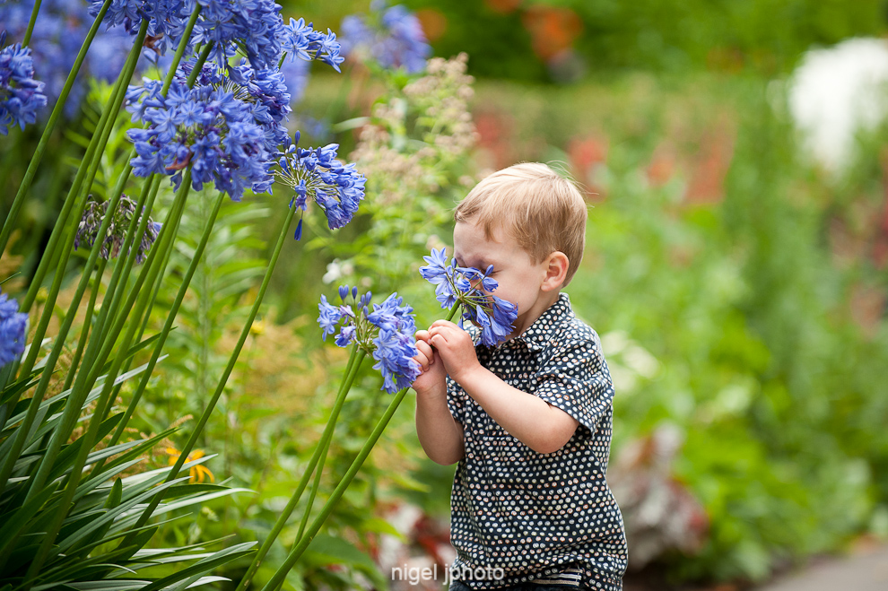 three-year-old-boy-smelling-flower-seattle-portrait-2.jpg