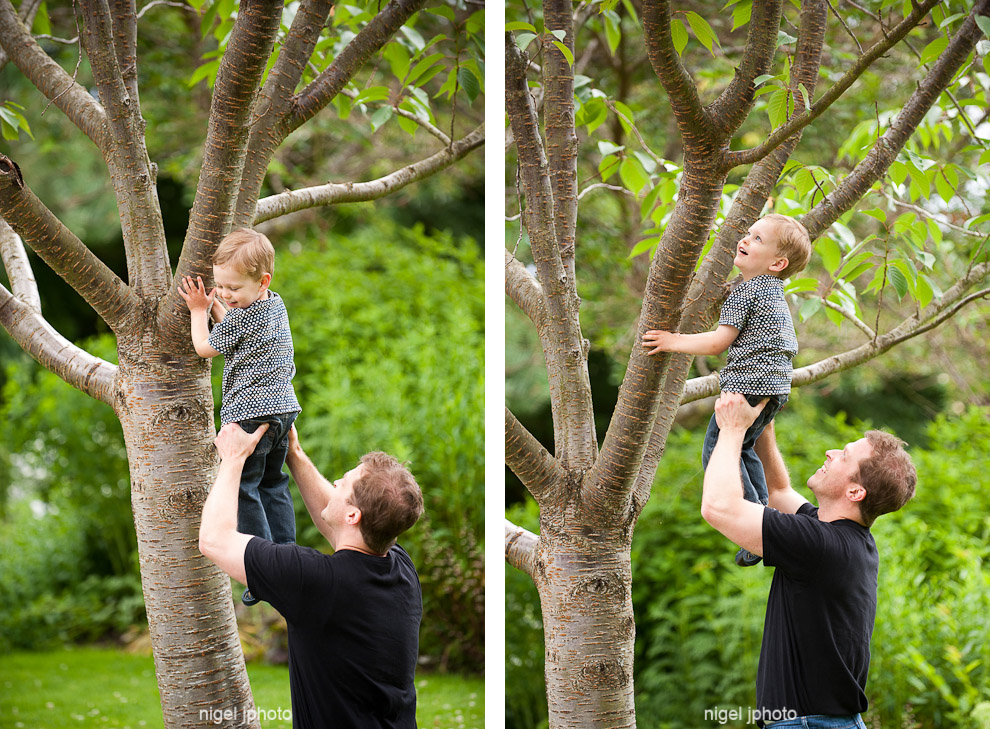 three-year-old-boy-climbing-tree-with-dad-seattle-portrait.jpg