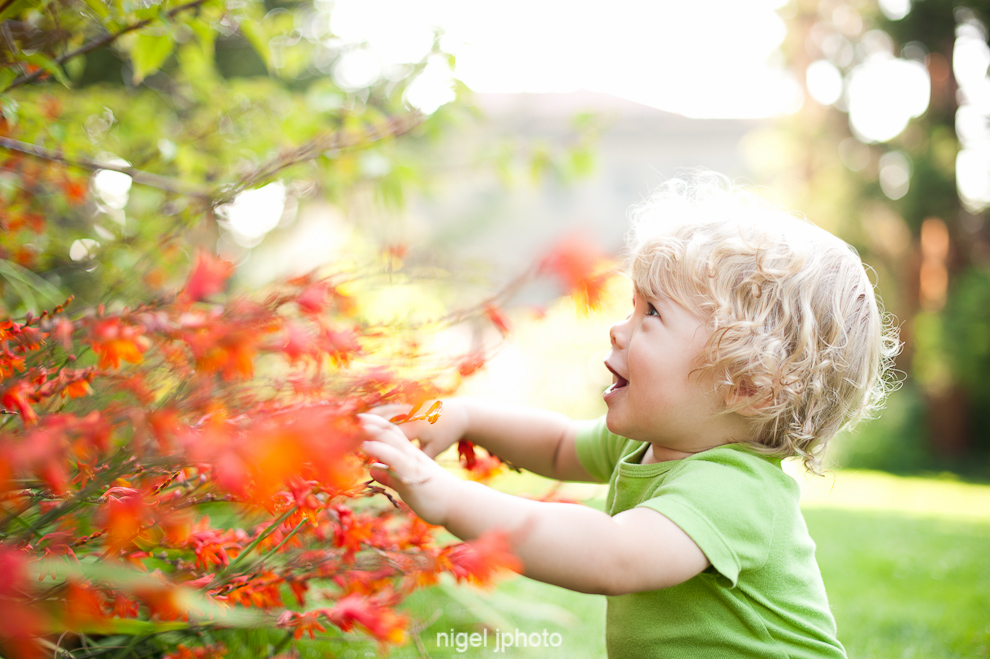 portrait-one-year-old-blonde-boy-sitting-ballard-locks-orange-flowers-seattle-2.jpg
