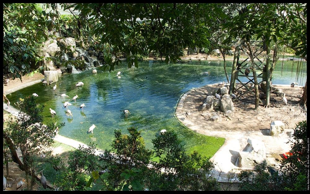 140223 KL Bird Park 13.jpg
