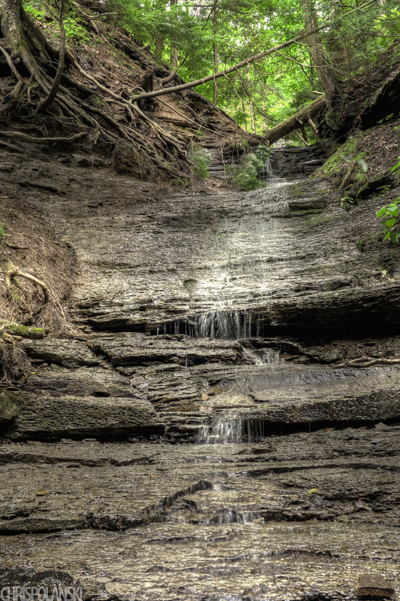 Tributary Waterfall; Chestnut Ridge Park