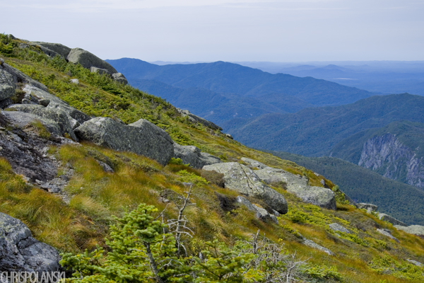 Side of Algonquin Peak