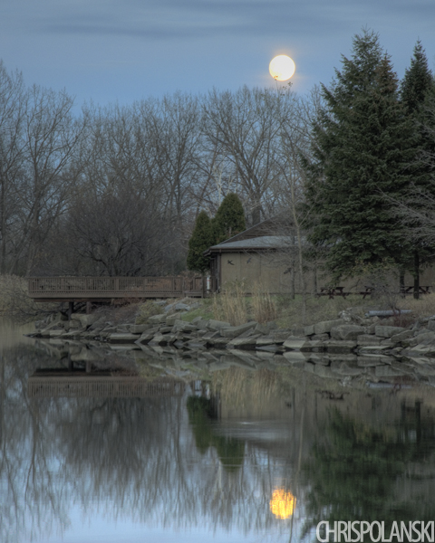 Moonrise Over Tifft Nature Preserve; Buffalo, NY