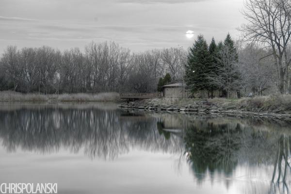 A Hint of Green; Buffalo, NY