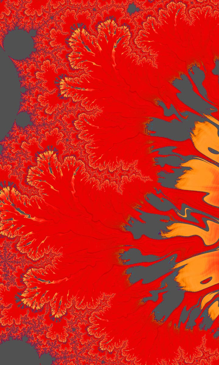 Fractal 6 - Poppy