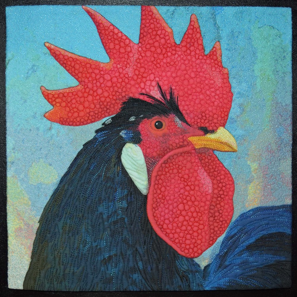 Do Roosters have Eyebrows?