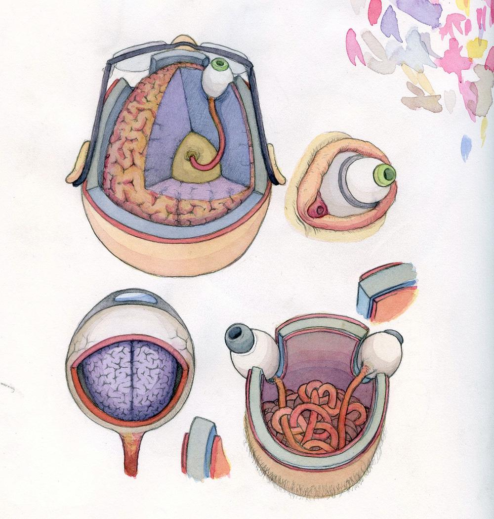 sketchbookss.jpg