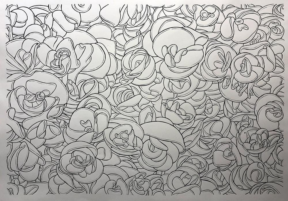 begonias-inked.jpg