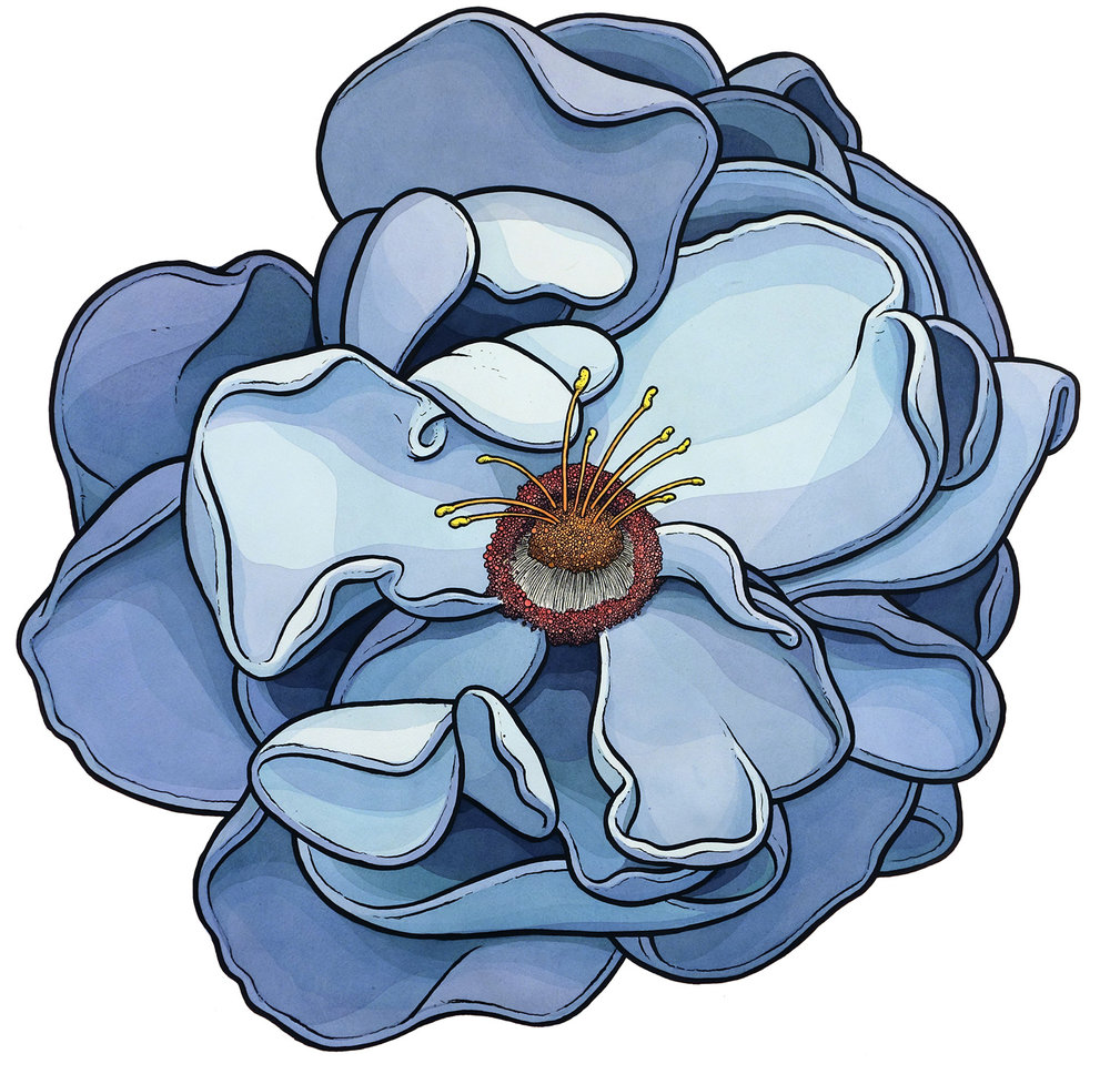"Blue Flower 22"" x 24"""