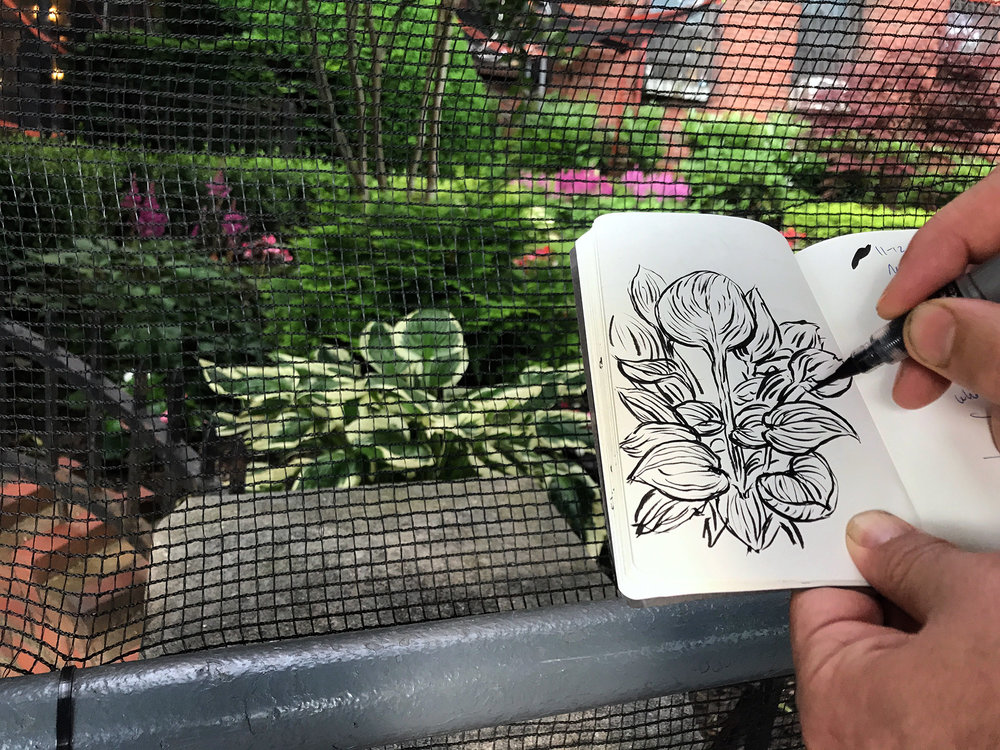 Sketch outside Brooklyn apartment after dinner 6/25/17