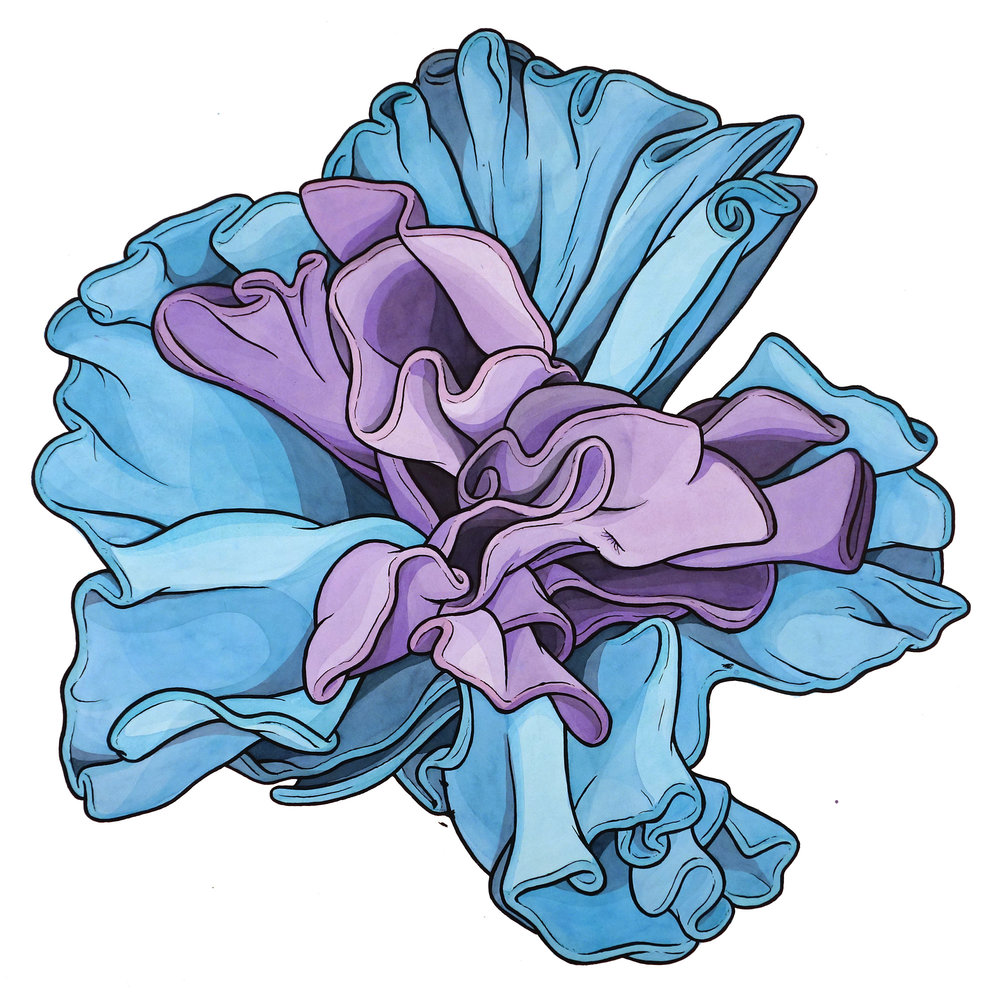"Party Flower (blue/purple) 26"" x 28"""