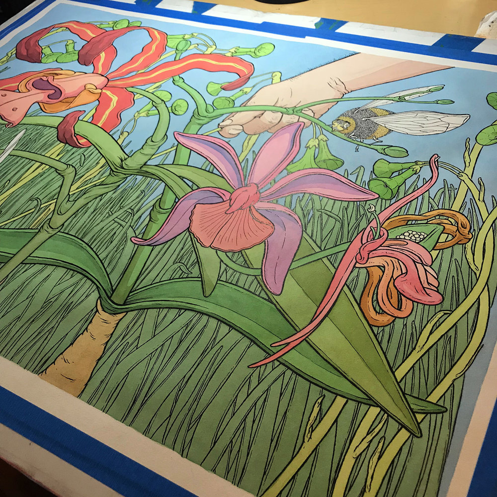 "18"" x 24"" pen & ink and watercolor - in progress.  More like this..."