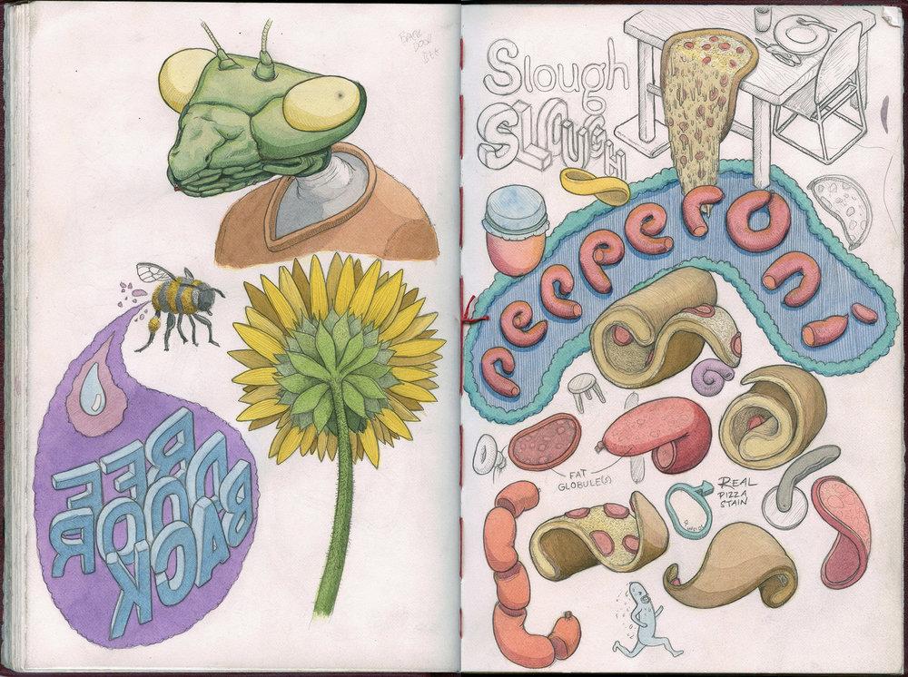 pepperoni-sketchbook-mantis.jpg