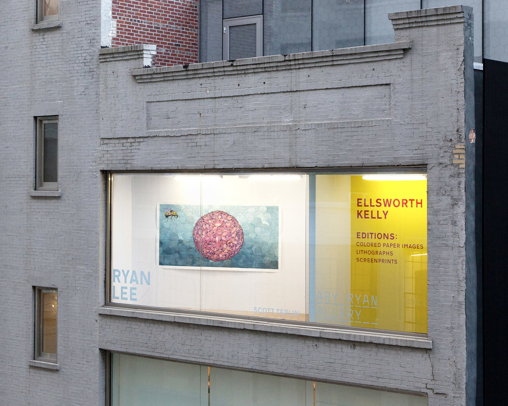 Pink Flowerball installed at Ryan/Lee Gallery
