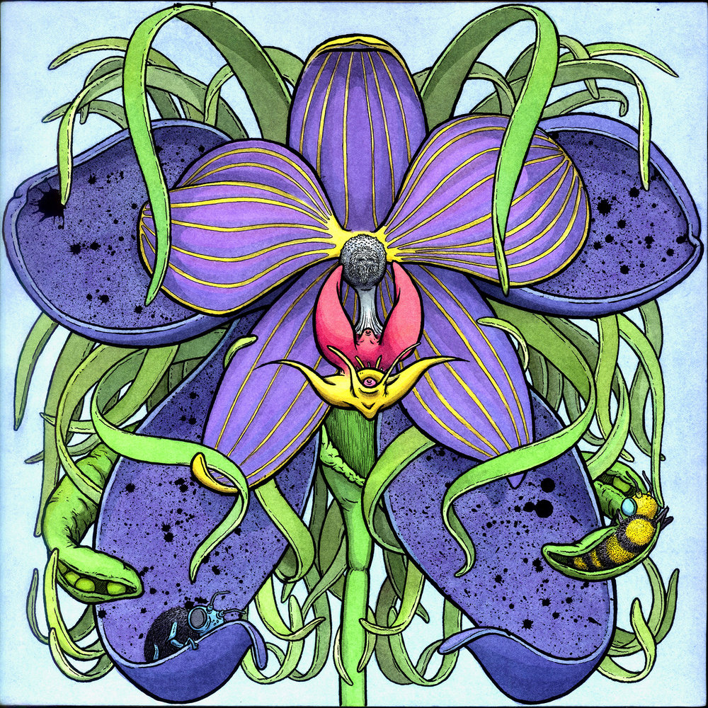 "Orchid with 2 Bees, 12"" x 12"" x 1"""