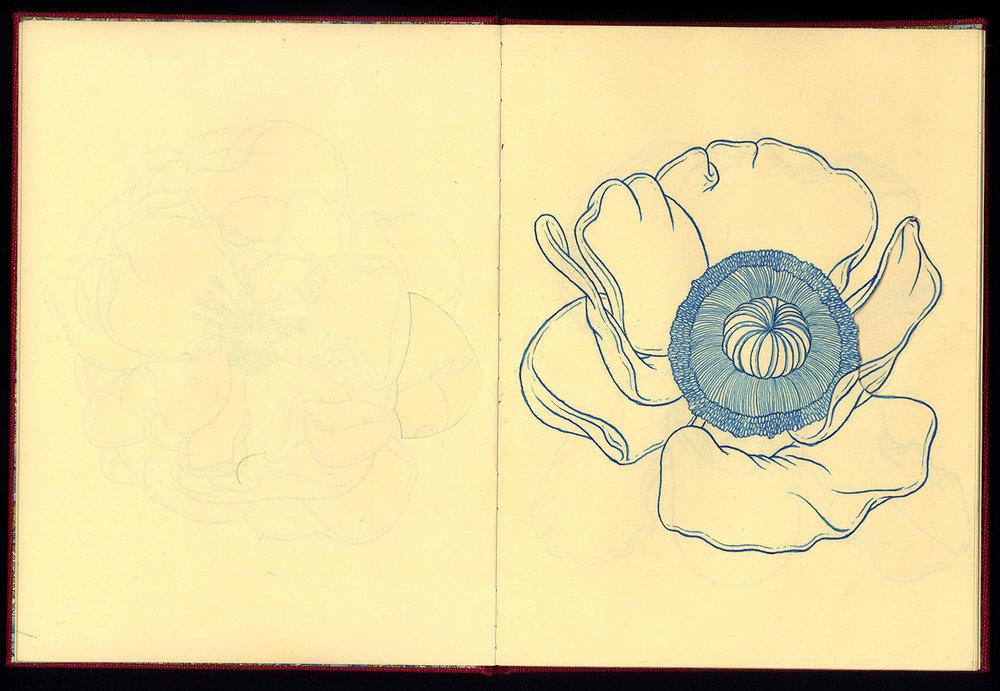 Phanerozoic Eon Page 5.jpg