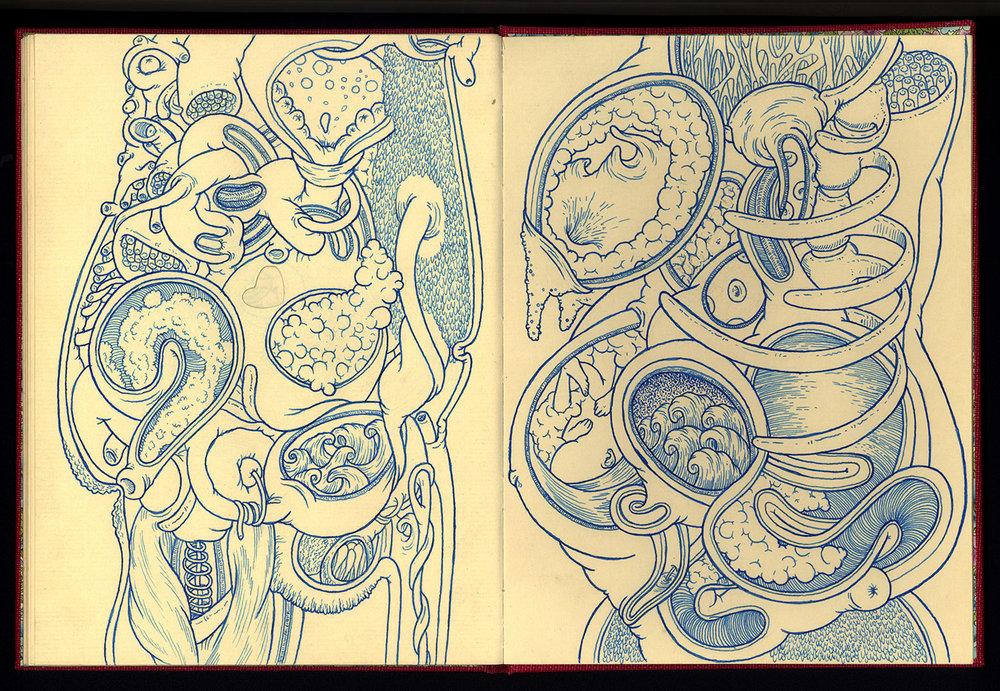 Phanerozoic Eon Page 15.jpg