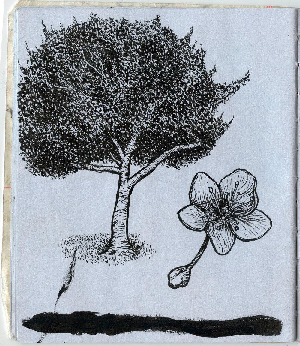 blue tree 1.jpg