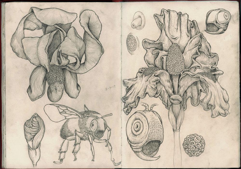bee heads sketchbook.jpg