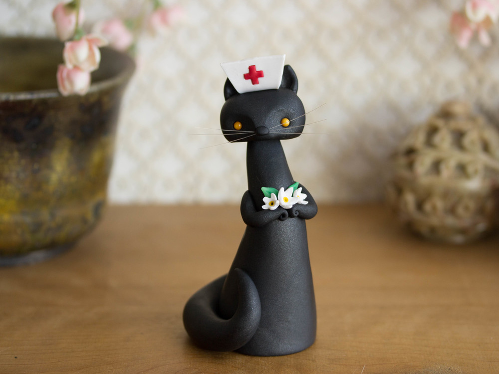 Black Cat Nurse