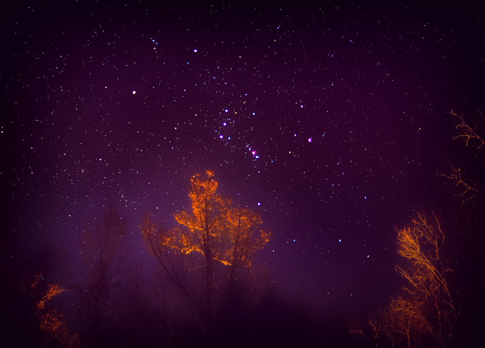 TR-stars.jpg