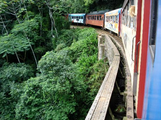 train-ride-from-curitiba.jpg