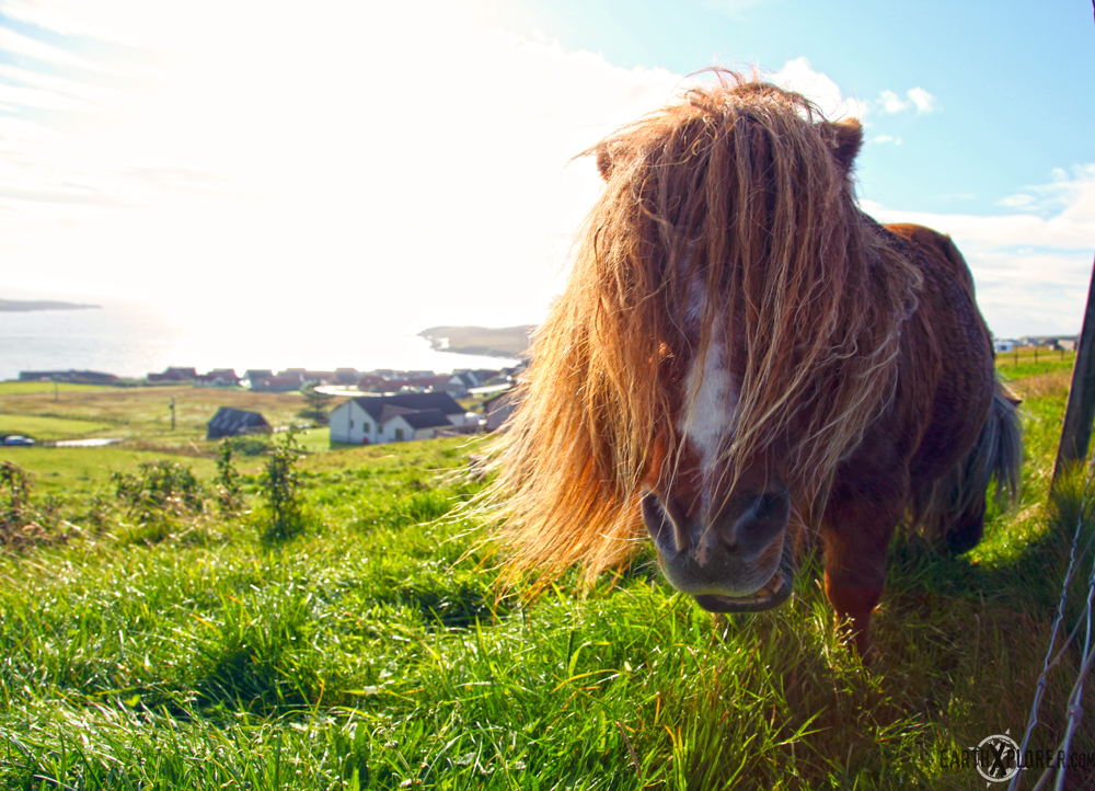 Shetland_Islands_2.jpg