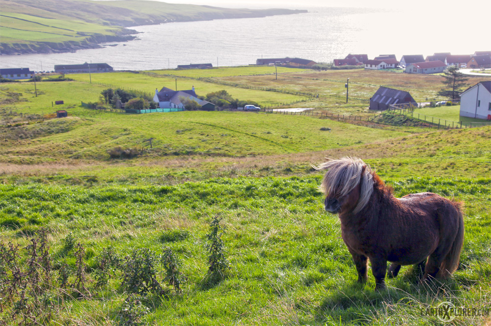 Shetland_Islands_1.jpg