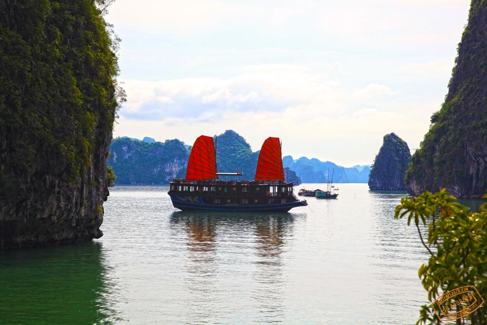 Halong Bay_Junk_boat_Vietnam.jpg