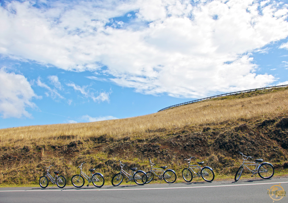 The bike route is 25 miles long, it's the most scenic tour on Maui.