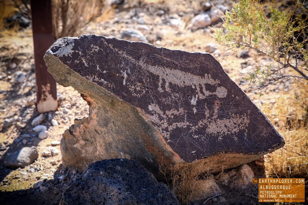 Petroglyph National Monument New Mexico 9.jpg