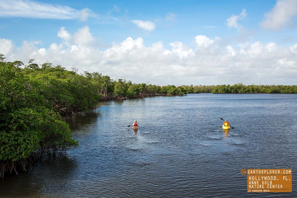 Kayaking Anne Kolb Nature Center Hollywood Florida.jpg
