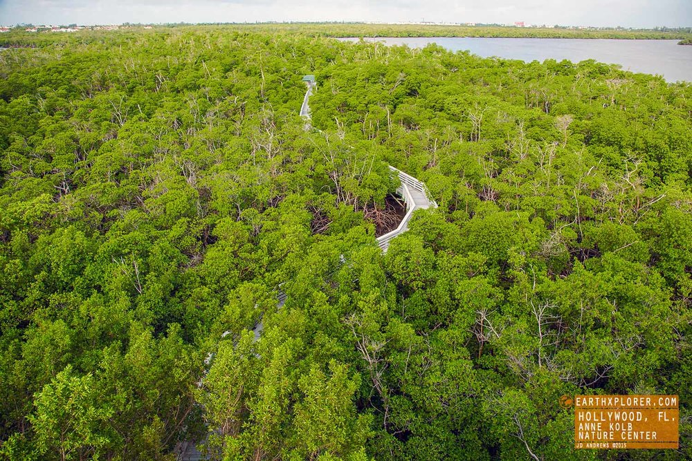 View Anne Kolb Nature Center Hollywood Florida copy.jpg