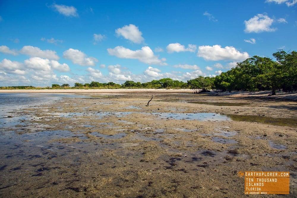 Tides Out Ten Thousand Islands Florida.jpg