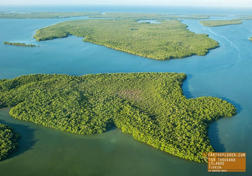 Flying Over Ten Thousand Islands Florida.jpg