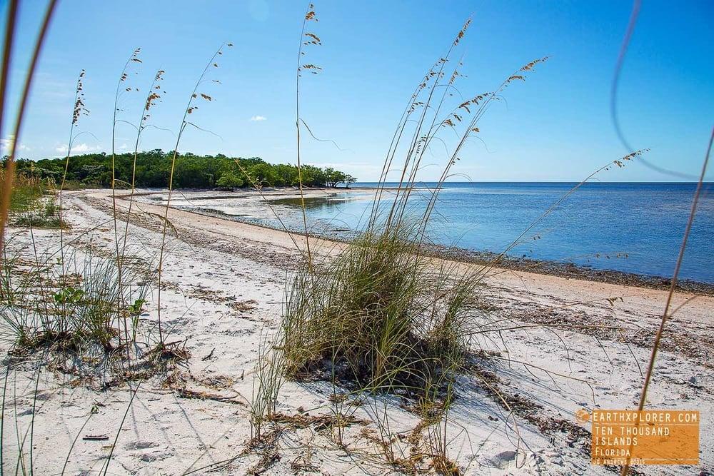 On the Beach Ten Thousand Islands Florida.jpg