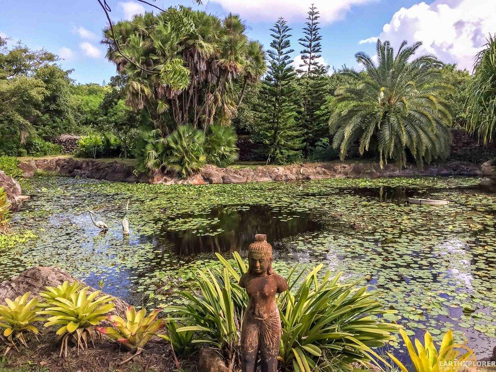 Nevis Botanical Gardens earthXplorer-10.jpg