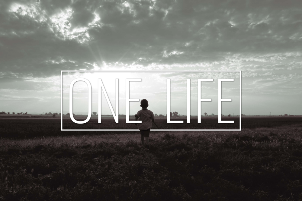 ONE LIFE 2016.png