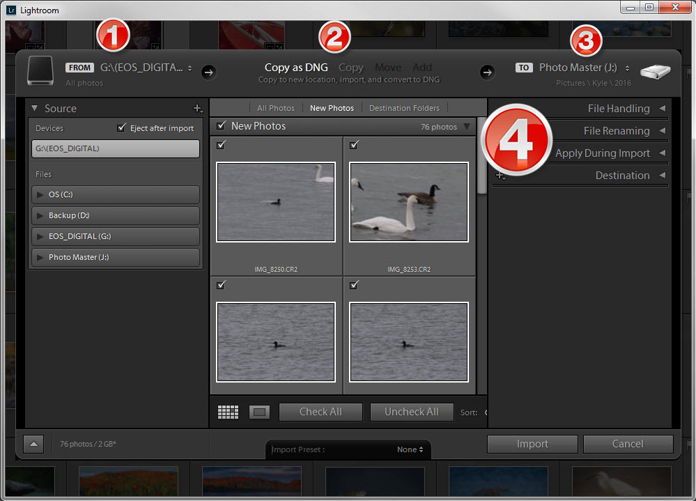 Adobe Lightroom's IMPORT DIALOG