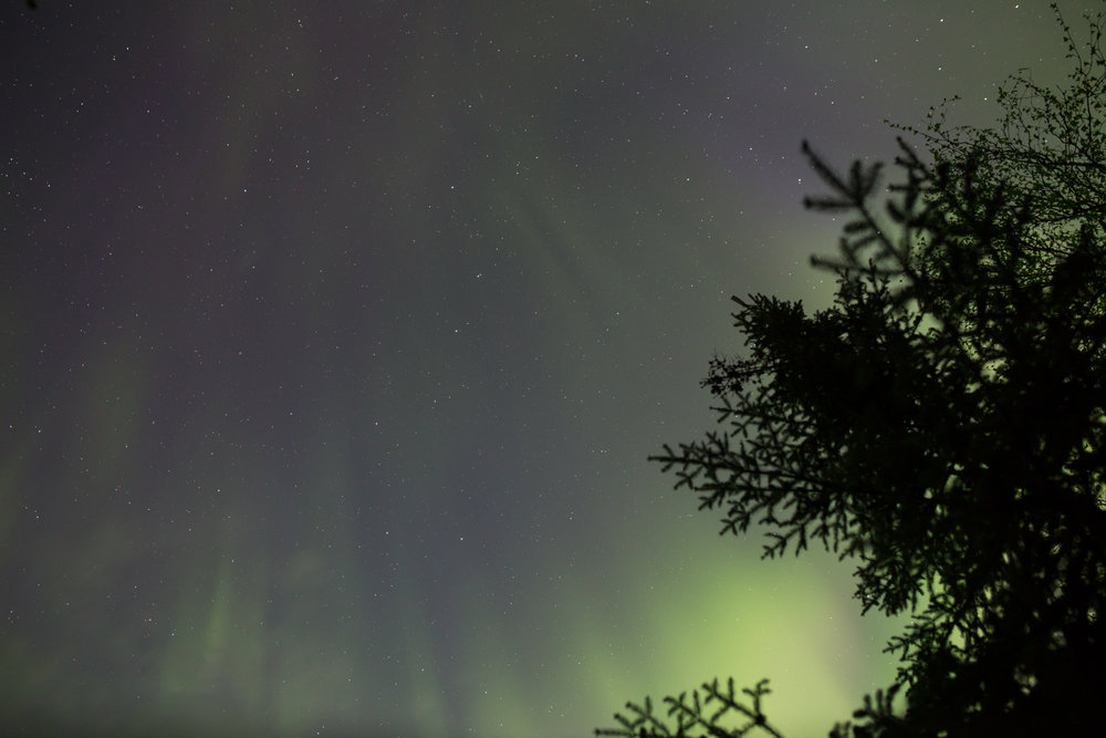 Northern Lights, Quetico Provincial Park, Ontario (10s exposure; f/2.8; ISO 1600)