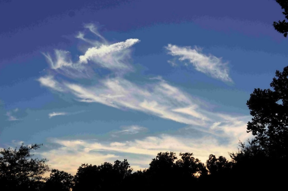 cloud perf clr_resize.jpg