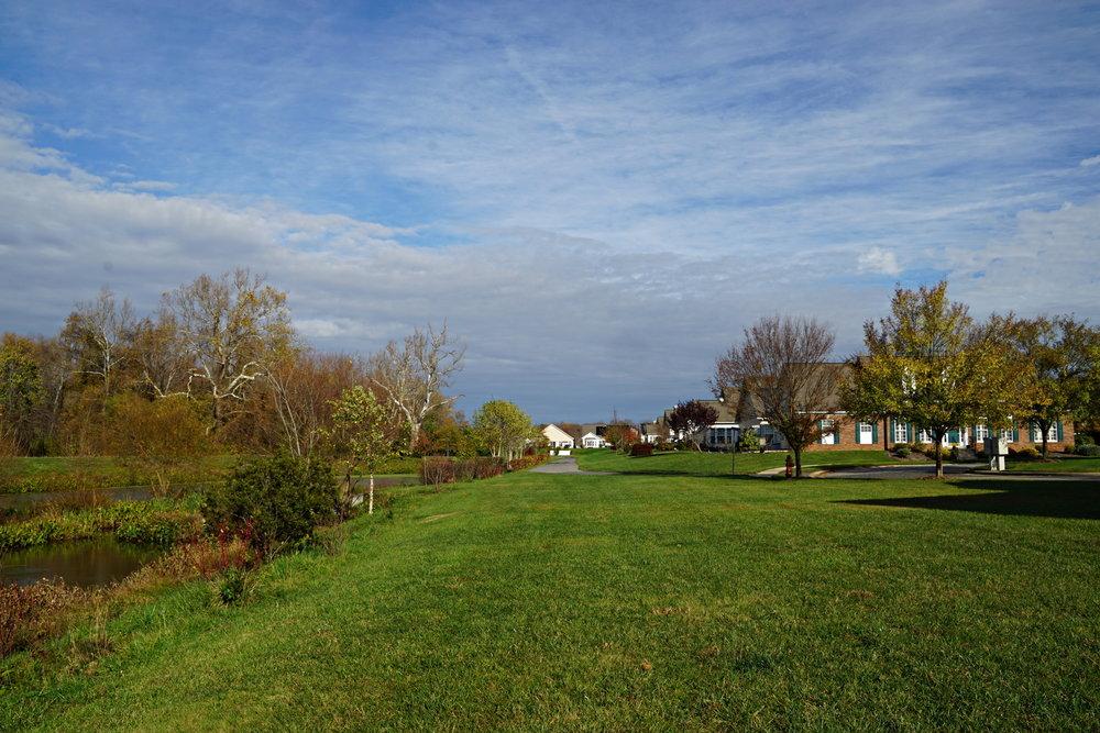 stormwater pond 4.jpg